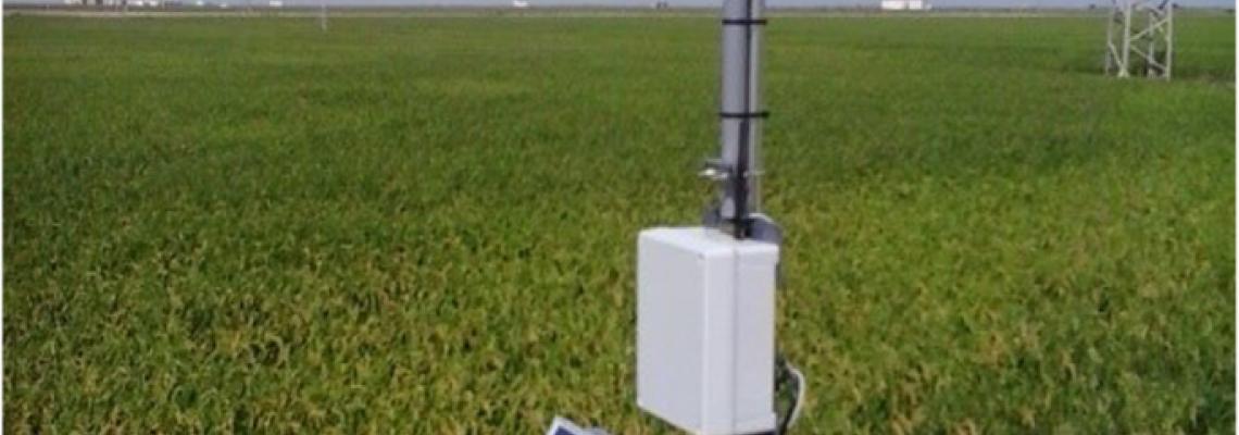 سیستم های هواشناسی و آبیاری هوشمند ساخت ایران در شالیزارهای مازندران